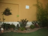 decoracao-de-quintal-3