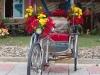 decorar-triciclo-para-a-primavera-7