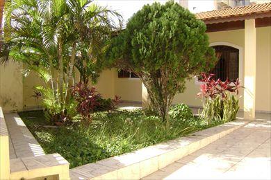 Jardim de Quintal - Casas e Flores Decora??o
